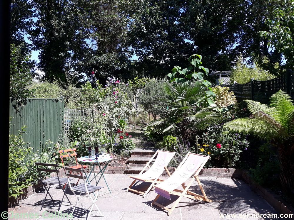 Ah, not quite at the seaside, but near it. I was in Brighton on the Tuesday, spending some lovely time in Kinny's garden.