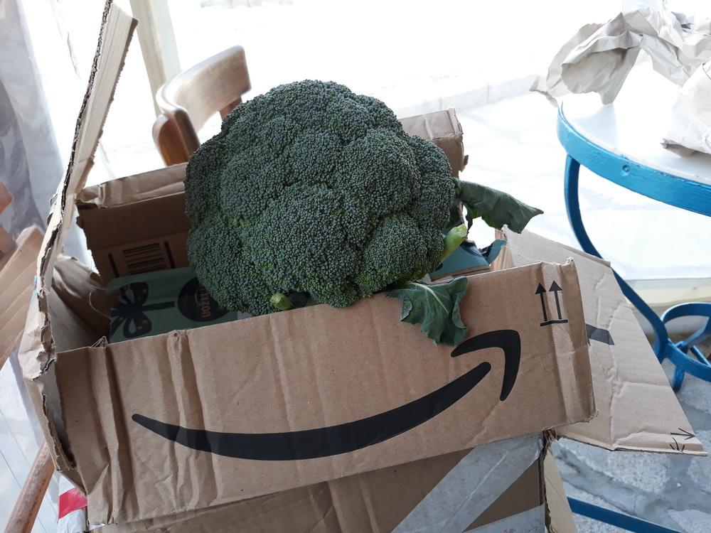 Amazon deliver broccoli now?