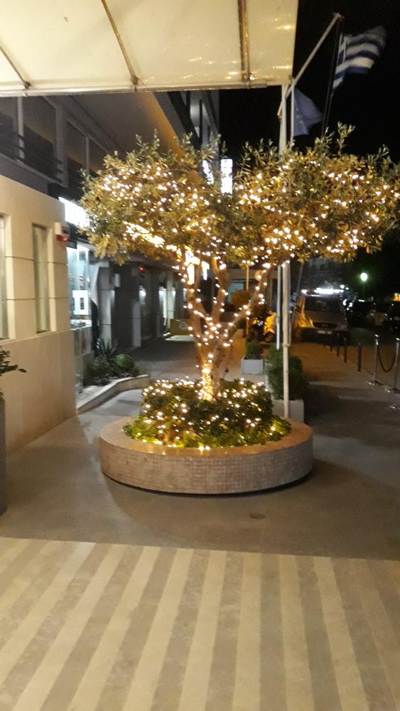 Plaza outside decorations