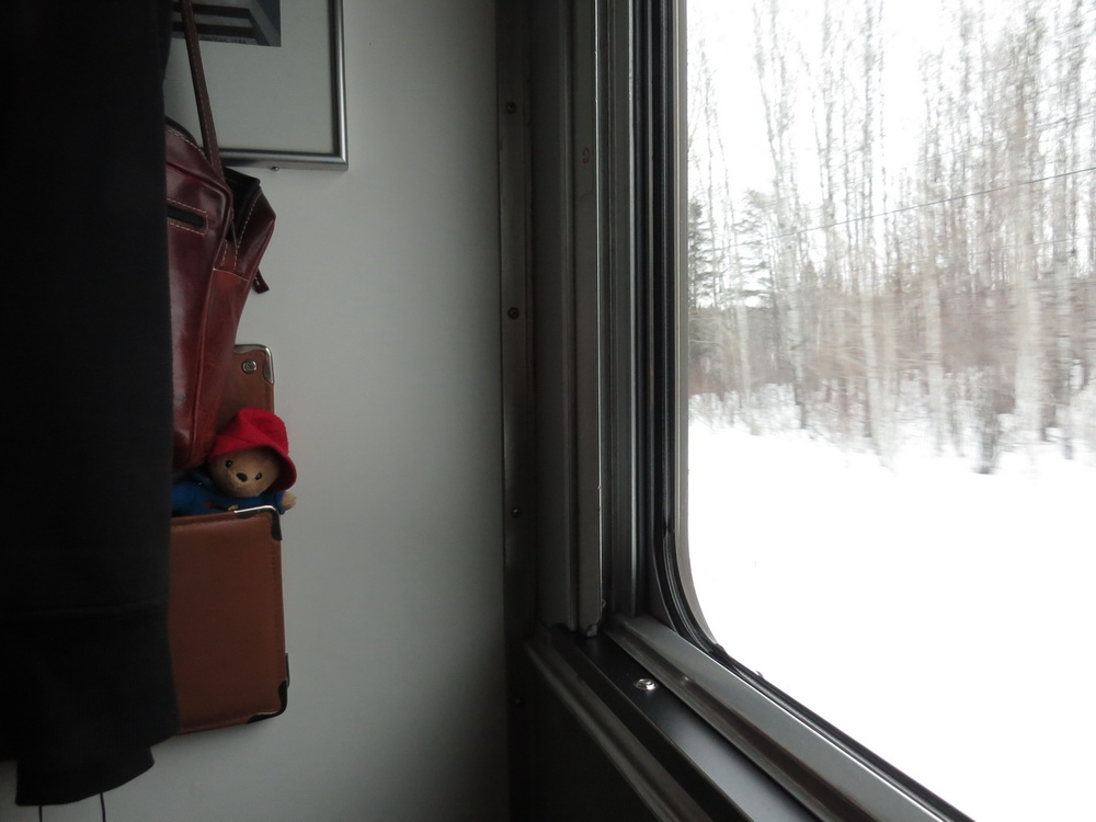 Day 12 March 13th train_10
